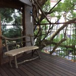 リゾナーレ熱海は宿泊だけじゃなく色々アクティビティーも楽しめます
