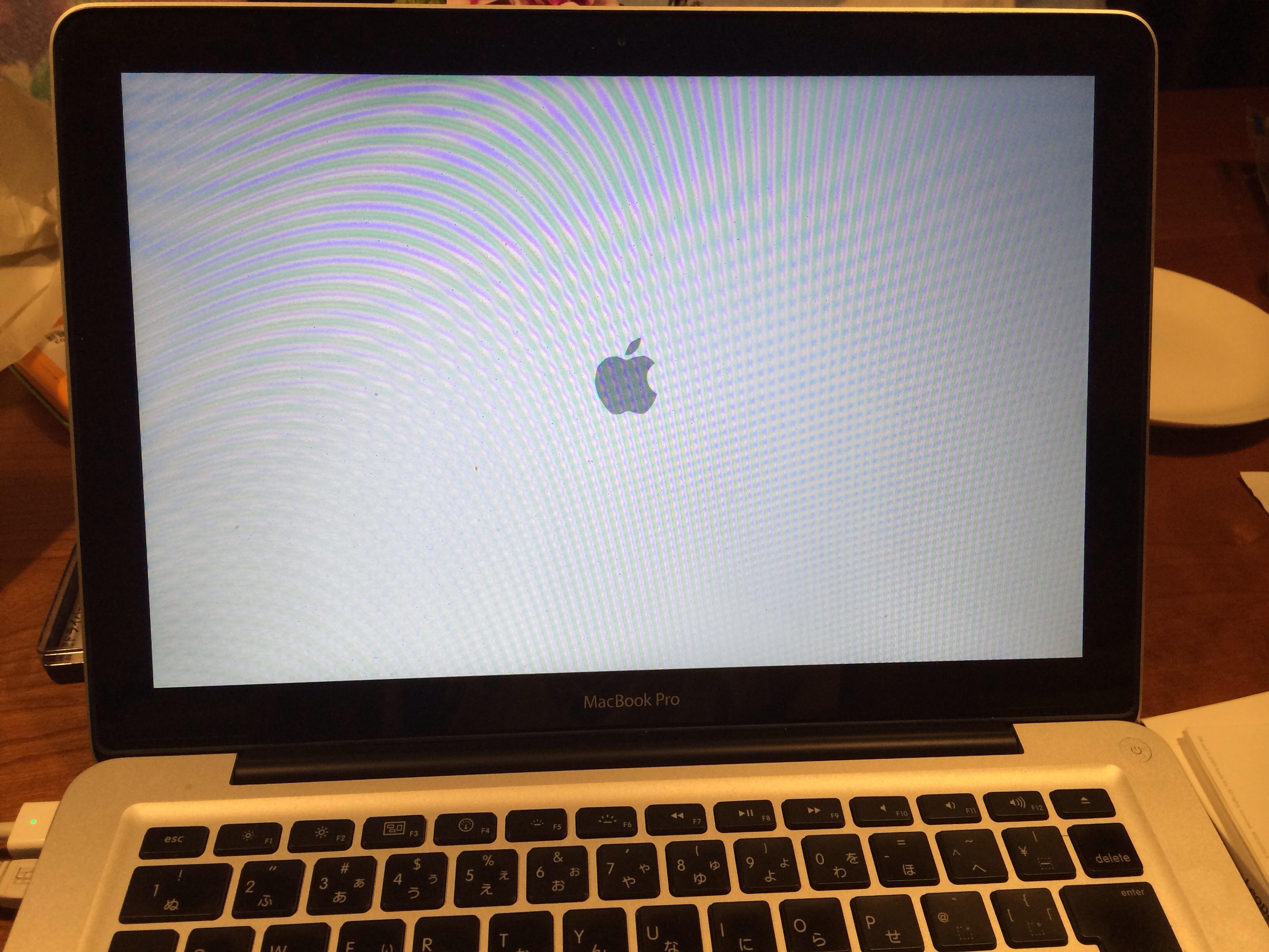 結局MacBook Pro(Mid 2009)にSSDを突っ込んだ