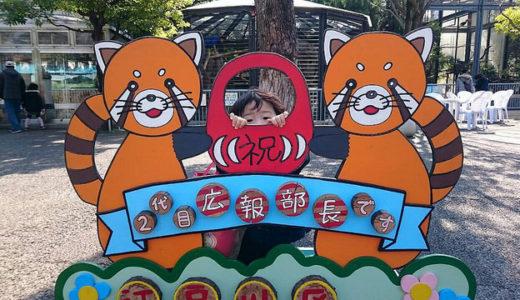 江戸川区自然動物園は無料なのにスゴい 触れ合いもできるよ