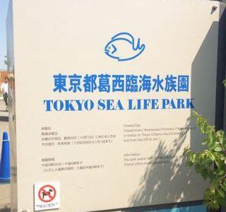 葛西臨海水族園でマグロ遊泳をみよう!葛西臨海公園での遊びにあきたらこちらに。