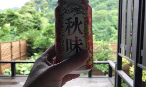 2017年の夏休みは長瀞(ながとろ)を漫喫しています