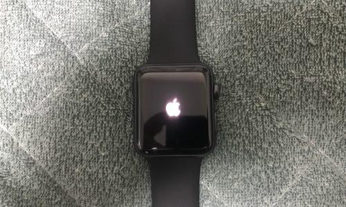 Apple Watch Series3は買いなのか?半月ほど使ってみての結論